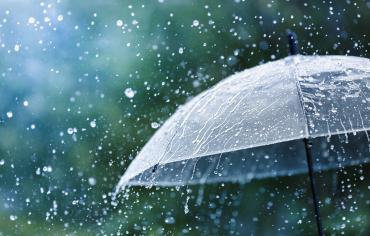 thumbnail of Rain Fears the Mighty Umbrella and All It Does