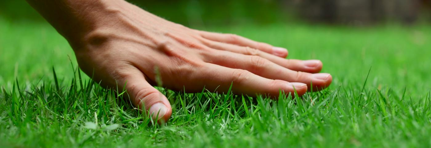banner of A Few Helpful Tips Can Help Anyone Improve Their Lawn Care